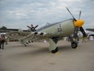 Hawker Sea Fury at Oshkosh